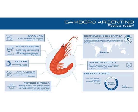 Gambero argentino